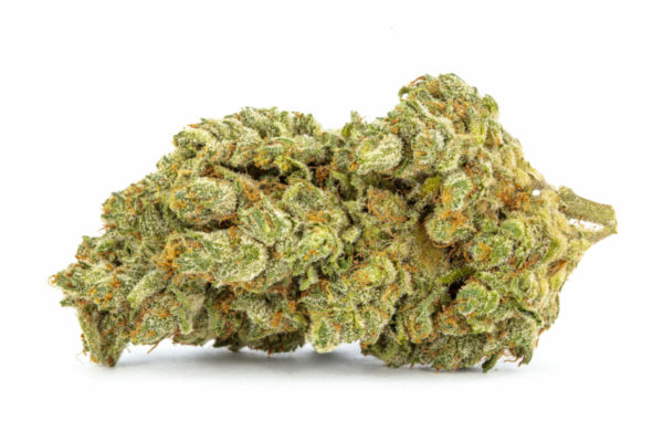 The Sour Tangie Strain high boasts a combination of indica and sativa effects